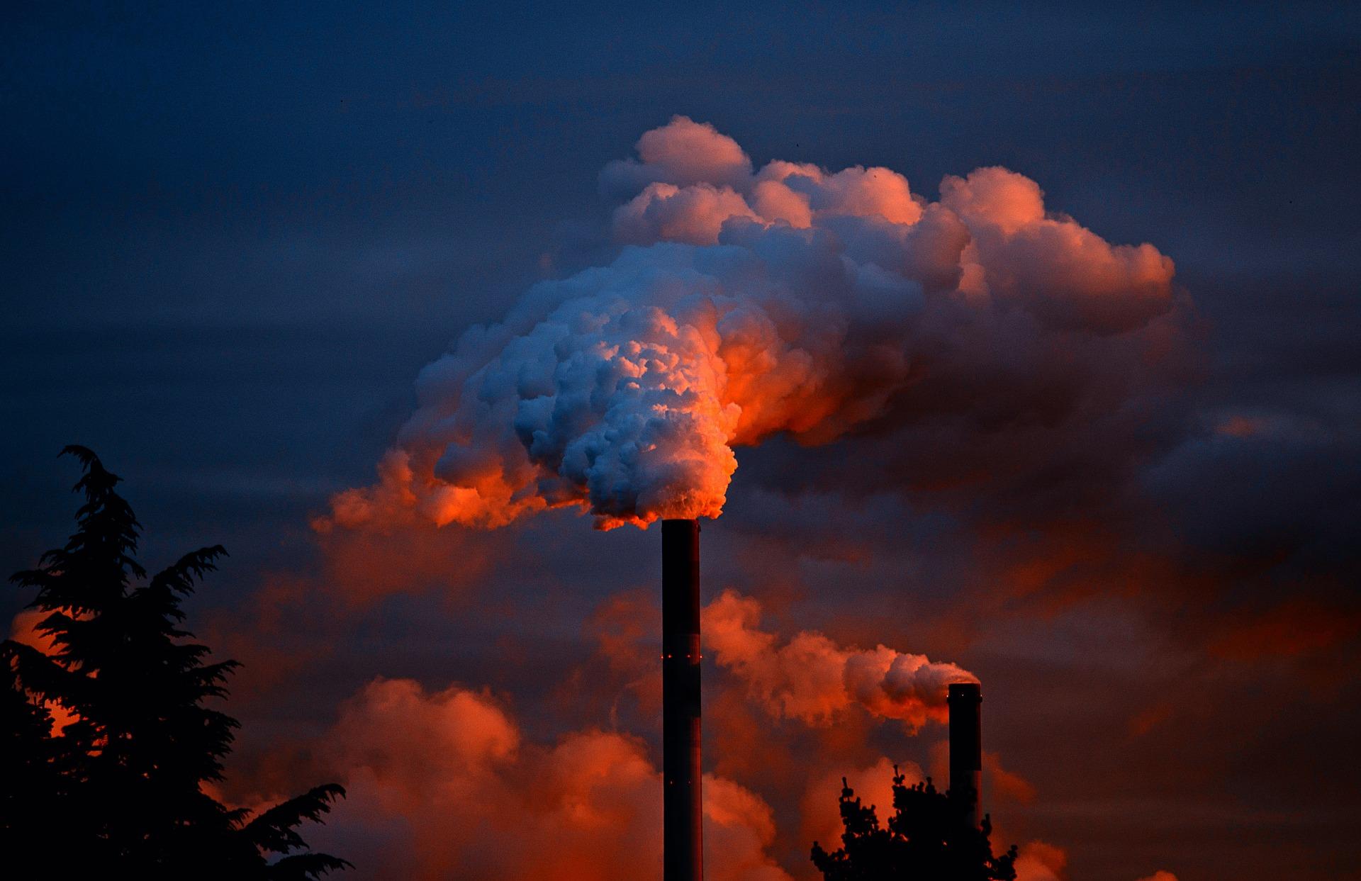 L'écologie dans l'industrie : un vecteur de productivité ?